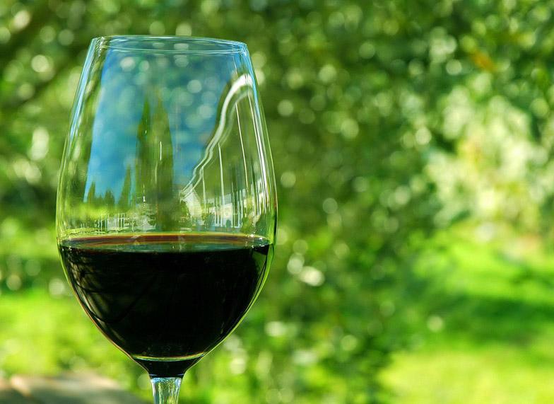 Toledo Cultura y Vino